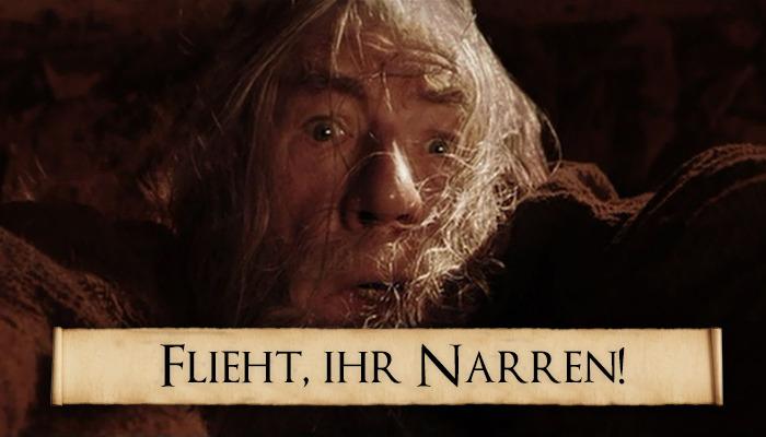 flieht-ihr-narren