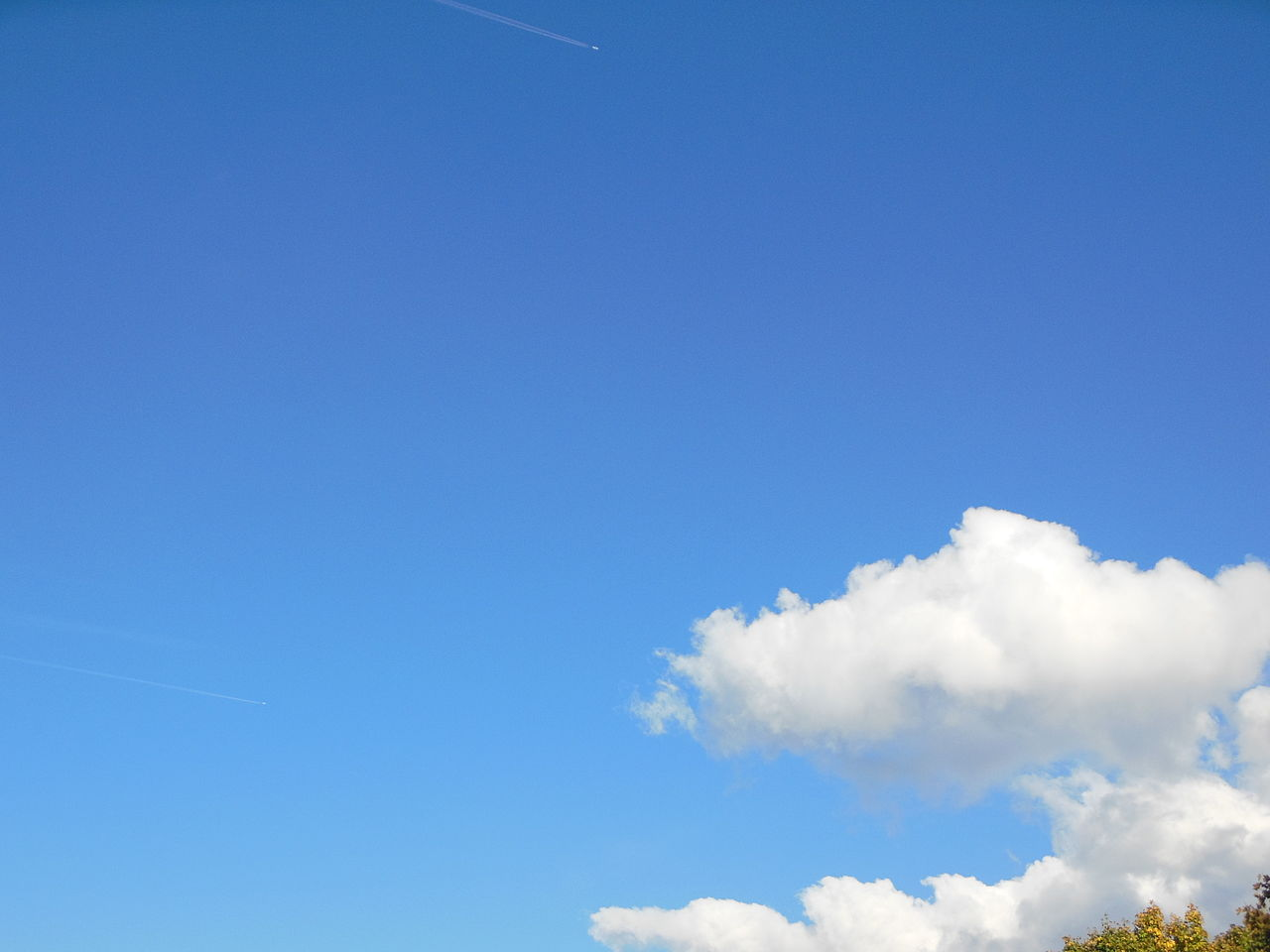 Berühmt Blauer Himmel Lebenslauf Service Bilder - Entry Level Resume ...
