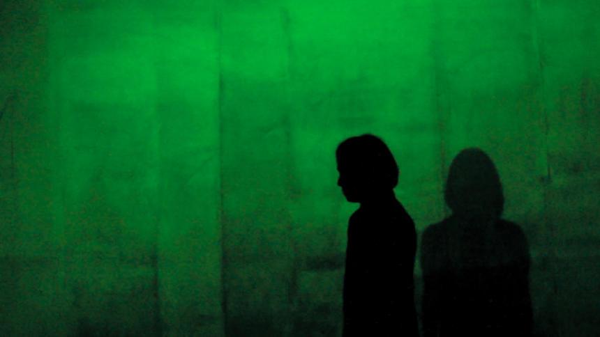 Im Schatten Der Netzwelt