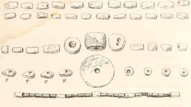 Zeichnung über Muschelgeld.