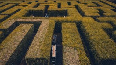 Heckenlabyrinth
