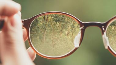 Hände halten Brillen, in denen sich Wald spiegelt