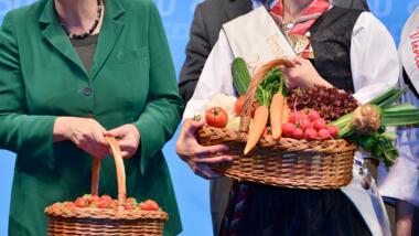 Körbe mit Gemüse und Obst