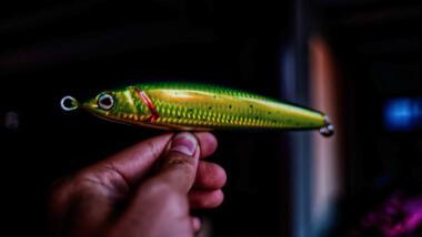Köderfisch aus Plastik