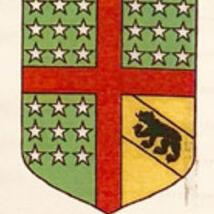 """Das Wappen des """"Berner Clubs"""" mit dem Berner Bären und 27 Sternen."""