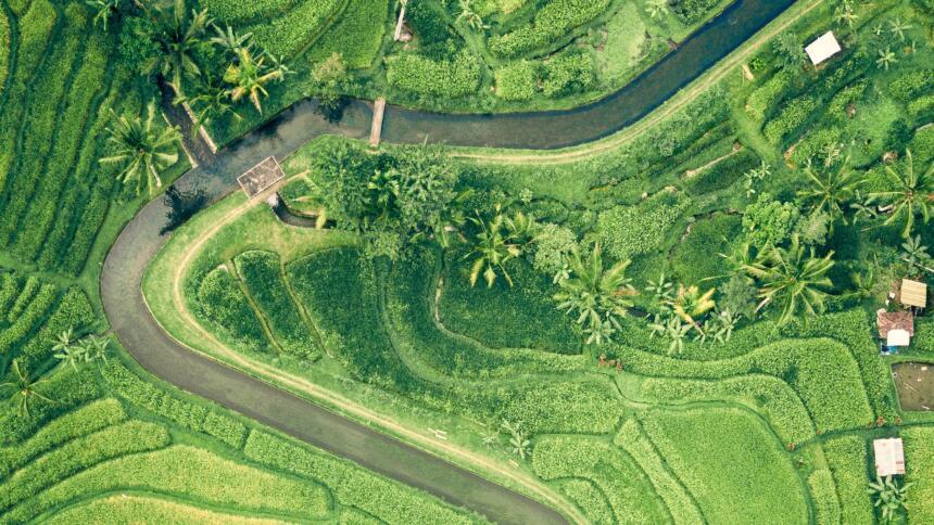 Ein geregelter Fluss durch eine grüne Ebene