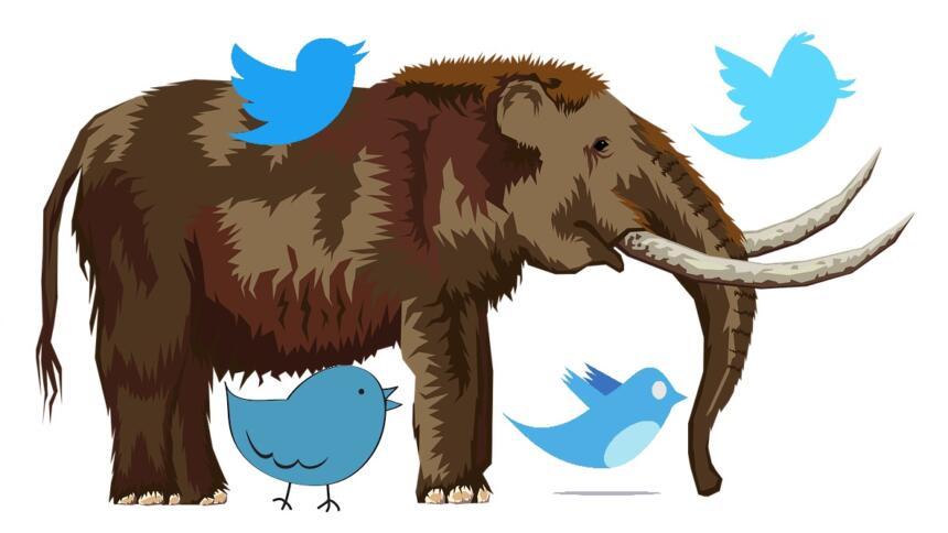 Mastodon mit Twitter-Vögeln