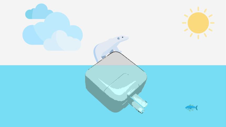 Die Spitze des Eisbären