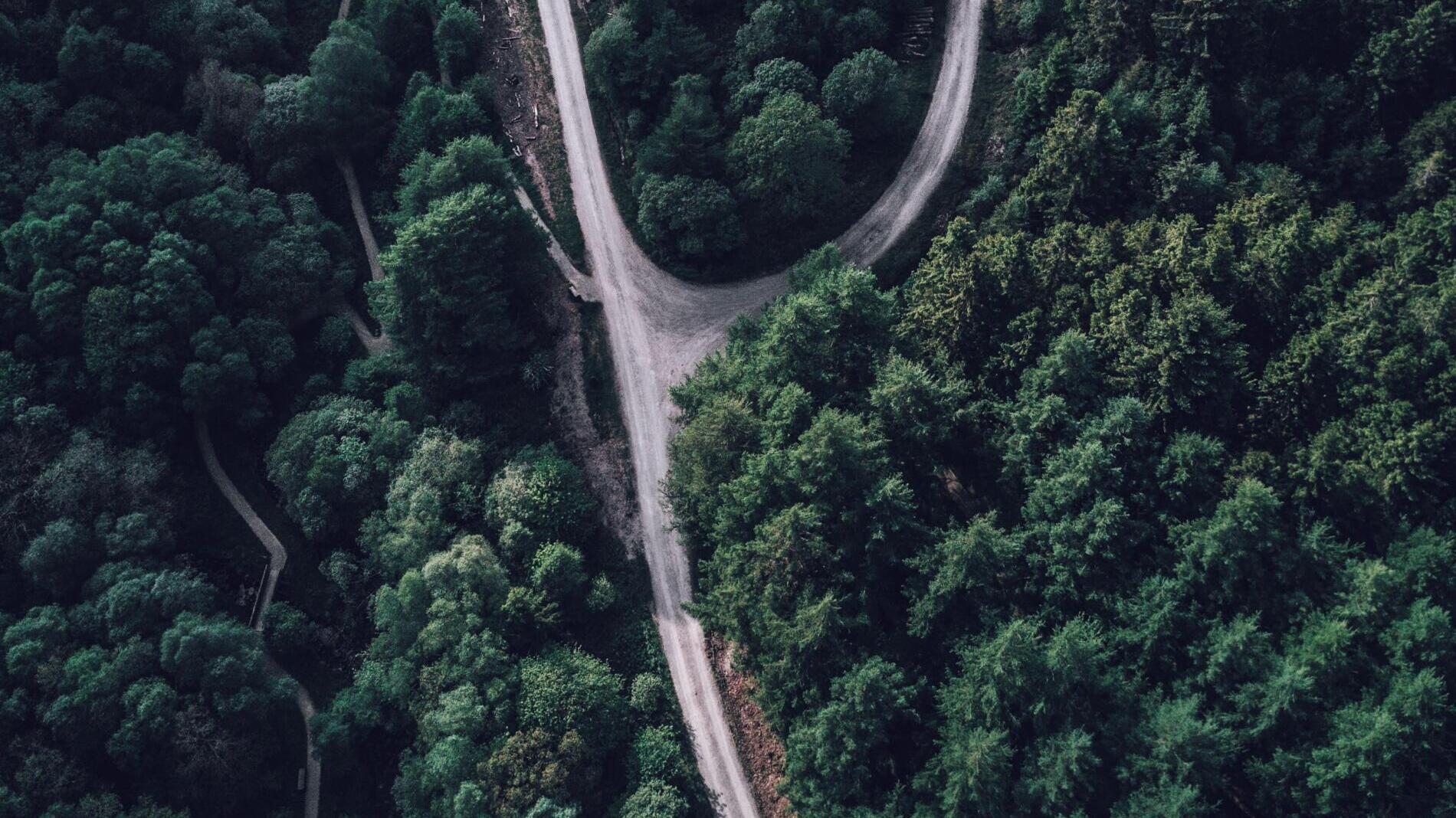 Algorithmische Entscheidungen - Warum das Scoring polnischer Arbeitssuchender gescheitert ist