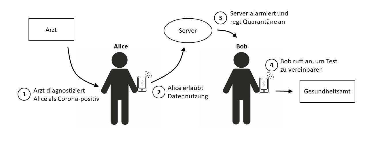 Abbildung 2: Falls nach einer Corona-Diagnose der Nutzer seine App-Daten an den Server sendet, können alle Kontaktpersonen durch die App kontaktiert werden. Die Unterrichtung des lokalen Gesundheitsamts muss die Kontaktperson vornehmen, da ihre Identität nicht mit der App verbunden ist.