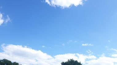 Viel blauer Himmel mit wenigen Wolken und Baumspitzenspitzen an der unteren Bildkante.