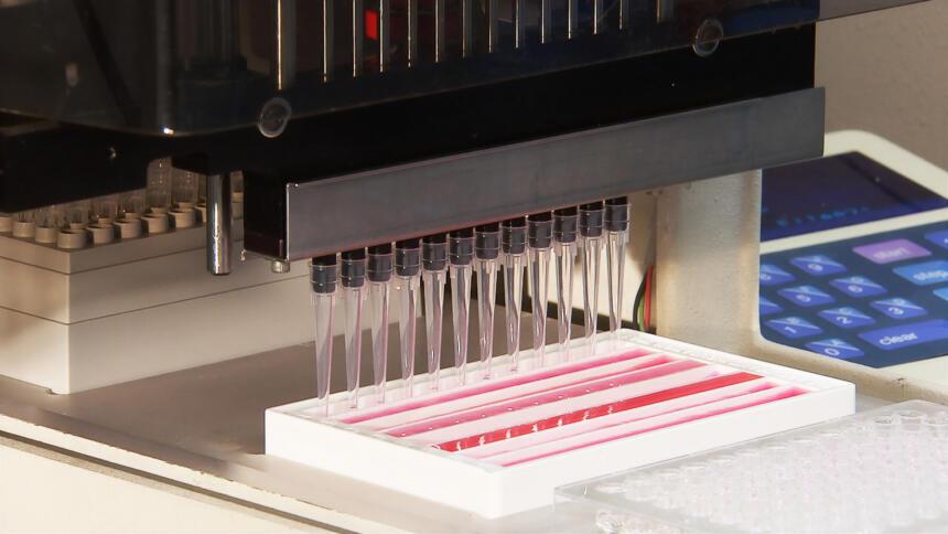 Hunderttausende Tests werden jeden Woche durchgeführt.