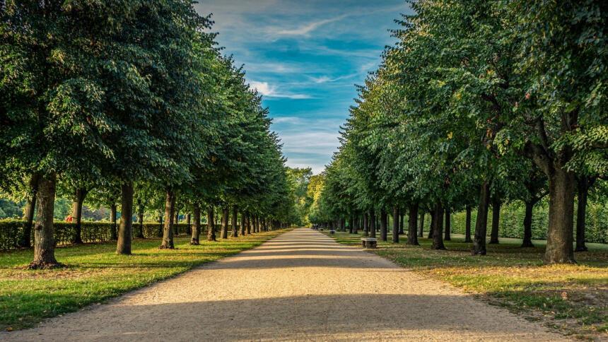 Berliner Schlosspark