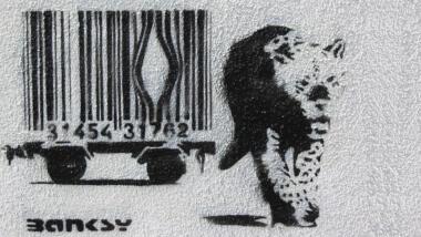 Großkatze bricht aus Strichcode-Käfig aus
