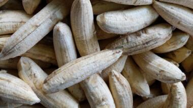 Bild von reifen Bananen
