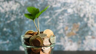 Münzen in einem Topf, ein Pflänzchen wächst daraus
