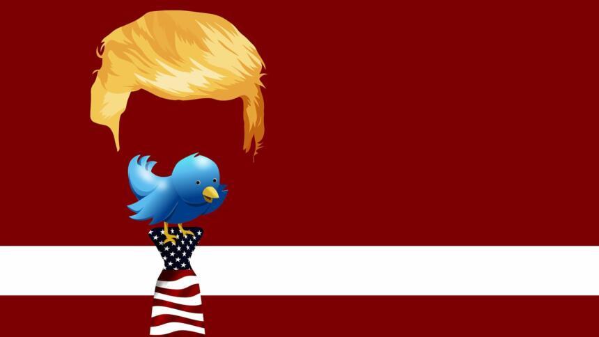 Die Frisur von Donald Trump mit einem Vogel, der dem Twitter-Logo ähnelt als Kopf.