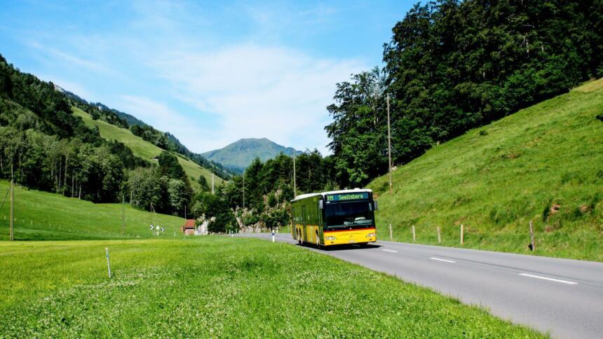 Bus fährt auf Landstraße