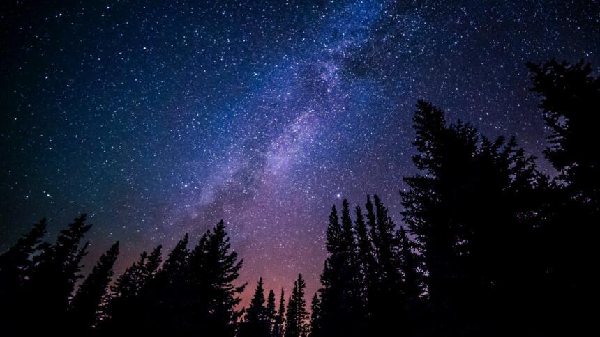 Sternenhimmel mit Bäumen davor