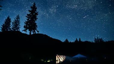 Sternenhimmel mit Tanne