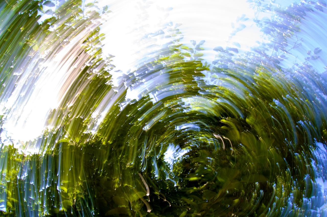 Zu viel Spin kann leichte Übelkeitsgefühle verursachen. CC BY-SA 2.0, via flickr/ Ilya