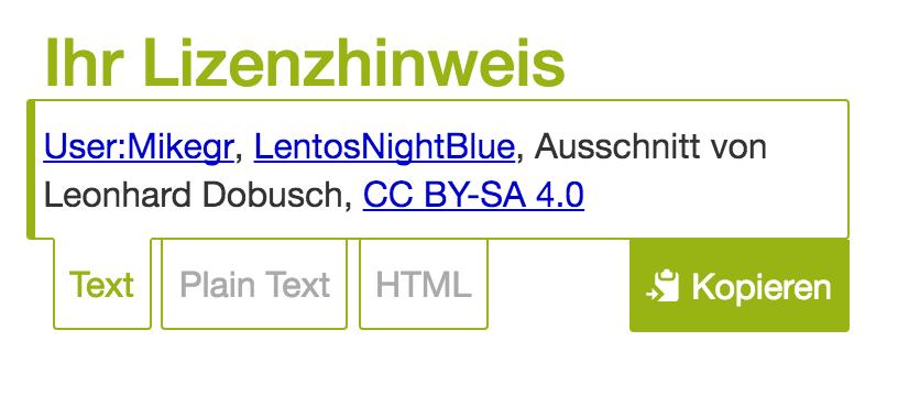 Screenshot Lizenzhinweisgenerator