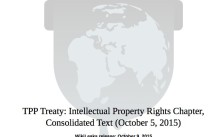 TPP-IP-chapter-cover