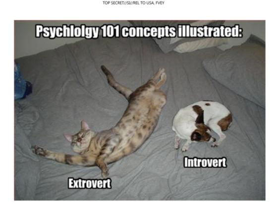 extrointrovert