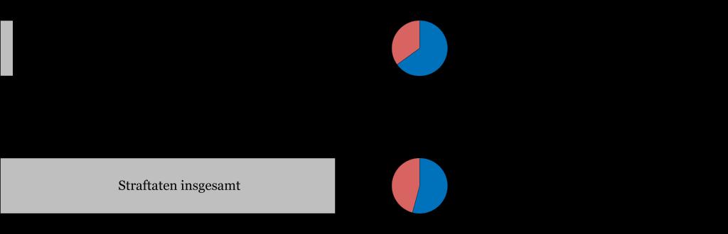pks-2012-tatmittel-internet