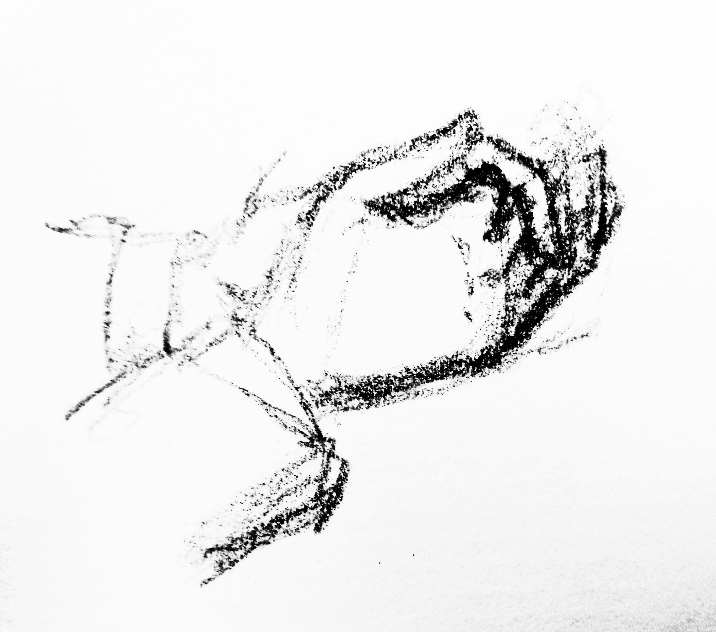 Nervöse Hände des BND-Mitarbeiters Dr. T. Zeichnung: Stella Schiffczyk